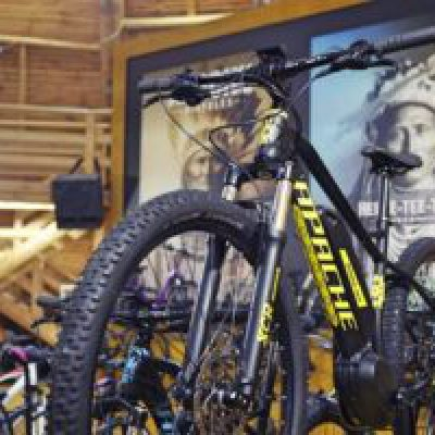 Export And Local E-Bike Market Drive Czech Bicycle Industry